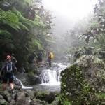 Raiatea Rando - the waterfalls