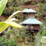 Mountainside bungalows