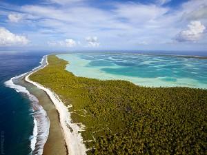 Coconut plantations in Tuamotu archipelago