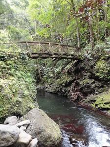 The Fautaua bridge