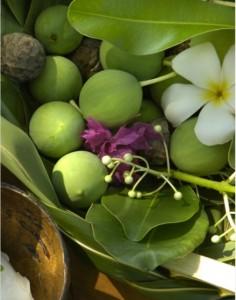 ©Danee Hazama-Tahiti Tourisme